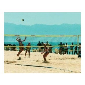 Volleyball og Beach Volleyball Net
