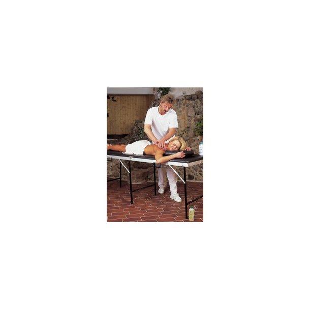 Massagebriks
